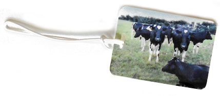 cow luggage tag