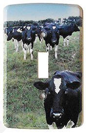 cow switch plate cover