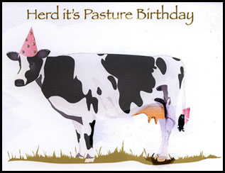 cow belated birthday card