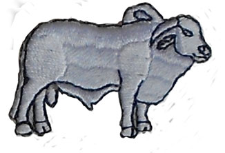 cow applique
